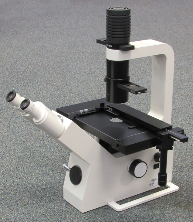Zeiss Telaval 31 Microscope